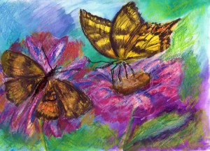 Colourful picture of some butterflies
